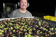 olivessmall1