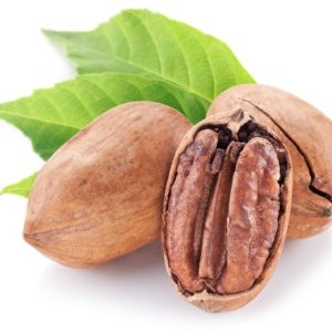 History of pecans Southern Nuts Lyons GA Picture of pecans